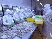 US lowers anti-dumping tariff on Vietnam's shrimp exports