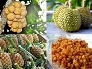 Thailand benefited from products with geographical indications