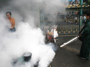 Dengue fever spreads in Bangkok