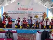 Work starts on first low-iron quartz powder plant in Vietnam