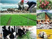 National online conference to be held on agriculture, farmers, rural a