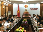 Thai-invested firm to build abattoir in Binh Dinh