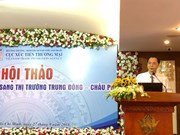Middle East, Africa – promising markets for Vietnamese goods