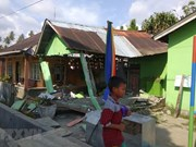 No Vietnamese victims reported in Indonesia quakes, tsunami