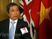 Vietnam-UK ties at their best: Ambassador