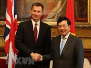 Vietnam, UK agree to consult about issues of shared concern