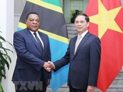 Vietnam treasures cooperative ties with Tanzania: Deputy FM
