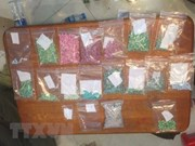 Quang Tri's border guards bust two drug trafficking cases
