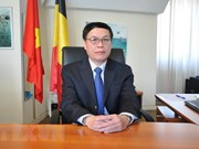 Vietnam boosts cooperative ties with Belgium, EU: diplomat