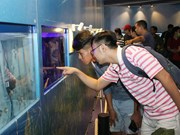 HCM City eyes ornamental fish breeding