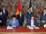 Vietnam, Belgium promote cooperation in multiple fields