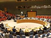 Vietnam concerned over escalating conflict in Gaza Strip