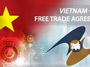 Workshop highlights untapped potential of Vietnam-EAEU FTA