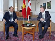Vietnam treasures comprehensive cooperation with Denmark: PM