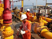 Vietnam Oil and Gas Group tops Profit500 Ranking