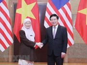 Deputy PMs call for stronger Vietnam-Malaysia strategic partnership