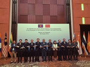 Vietnam calls for full, effective implementation of DOC