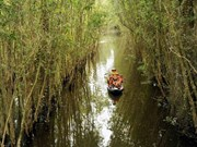 Water resources planning in Mekong Delta should be prioritised