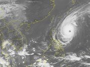 Philippines raises warnings, evacuates people ahead of Typhoon Yutu