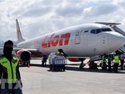Indonesia orders checks on all Boeing 737 Max planes