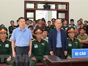 12-year jail sentence upheld for Dinh Ngoc He