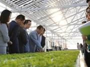 FLC plans to pour 1.5 billion USD in agribusiness