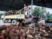 Switzerland, Indonesia agree on free trade deal