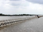 More than 300 billion VND to build sea dyke in Thua Thien-Hue