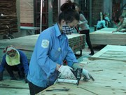 FLEGT-VPA to fuel Vietnam's wood export to global markets