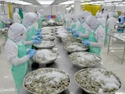 Aquatic product exports rake in 7.24 billion USD in 10 months