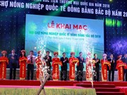 Int'l agriculture fair for northern region opens in Thai Binh
