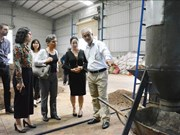Pyrolysis technology improves coffee quality