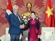 NA Chairwoman: Vietnam treasures friendship with Cuba