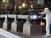 Stable growth predicted for steel consumption until year's end