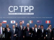 Action programme needed to fully tap CPTPP: experts