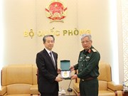 Defence ties, one of important pillars of Vietnam-China relations