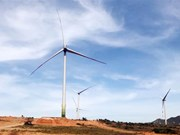 Ninh Thuan steps up implementation of wind power projects