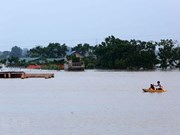 Measures to deal with Mekong Delta flood discussed