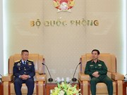 Vietnam, Thailand foster air defence cooperation