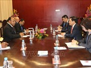 Deputy PM Pham Binh Minh meets with Papua New Guinea Foreign Minister
