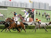 Hanoi to build 500 million USD horse racing track