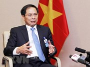 VN constructively contributes to APEC Economic Leaders' Week: official
