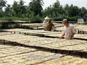 Ca Mau ethnic minority poverty rate falls 3 percent