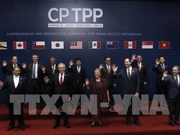 CPTPP to bring great chances for Singaporean businesses