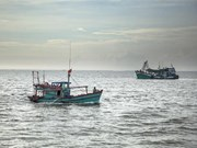 Kien Giang steps up education on IUU rules among fishermen