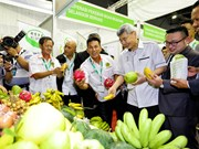 Malaysia moves to step up modernisation of agro-food sector