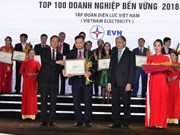 "EVN enters ""sustainable enterprises"" list in 2018"
