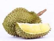 Durian set to become Malaysia's next major export