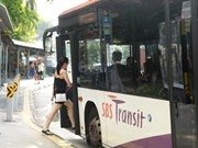 Singapore pilots on-demand public bus service