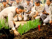 Thailand to hold World Soil Day in honour of late King